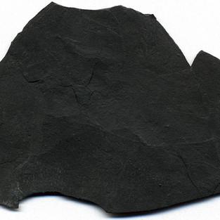 Shungite een uniek mineraal