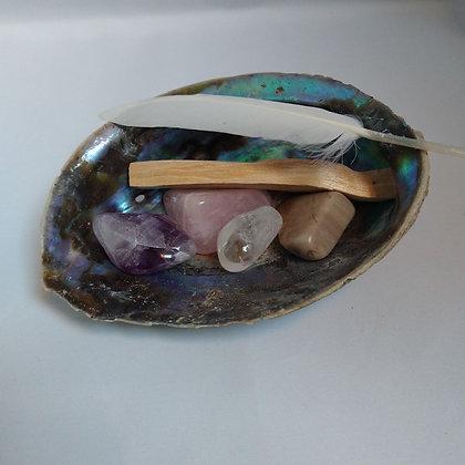 Abalone schelp harmonie