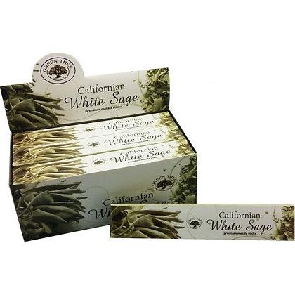 Witte salie - White sage GreenTree