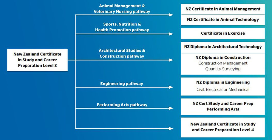 Pathway NZCSCP L3 2020.JPG