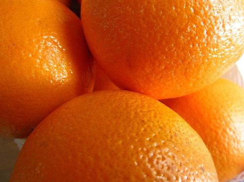 Orange Mousse - Claudia Marie Dessert Mix