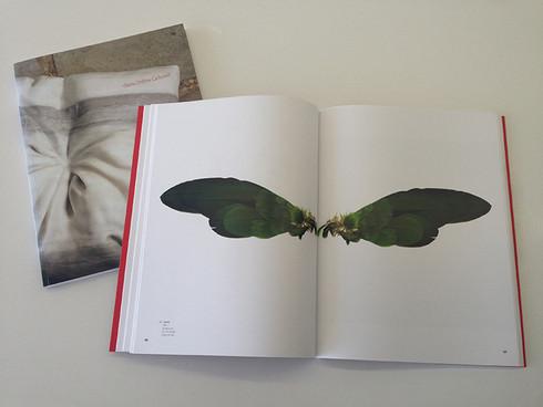 María Cristina Carbonell Art Book