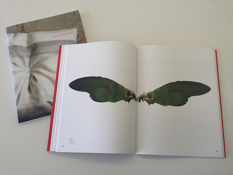 María Cristina Carbonell Art Book
