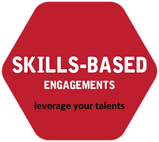 Hexagon - Red - Skills-Based engagements