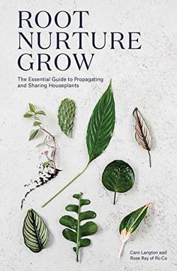 Root Nurture Growth