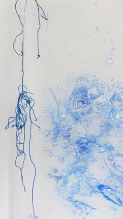 Bluecloseupstring.jpg