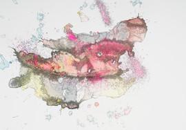 Emilee Yawn-pink and yellow.jpg