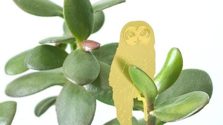Plant Animal Decoration - Owl