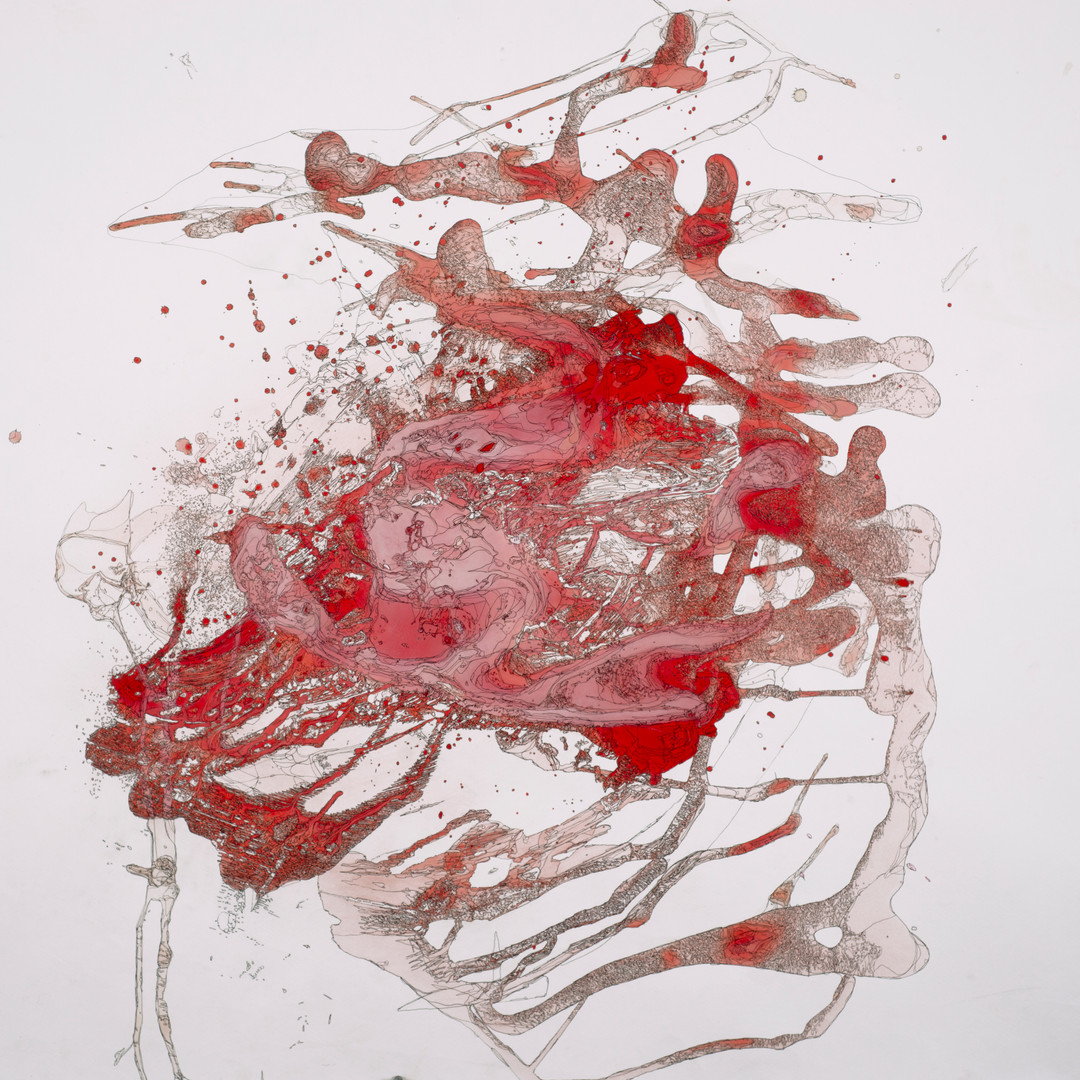 Emilee Yawn- Mapping of Red.jpg