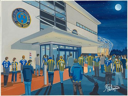 Shrewsbury Town New Meadow Stadium High Quality Framed Artists Proof Print