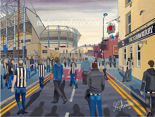 Newcastle United F.C, St. James's Stadium High Quality Framed Giclee Art Print