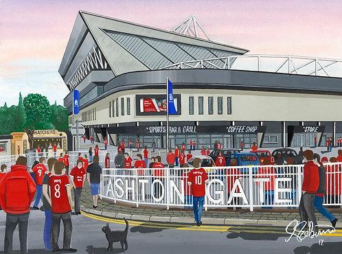 Bristol City F.C, Ashton Gate Stadium High Quality Framed Giclee Art Print