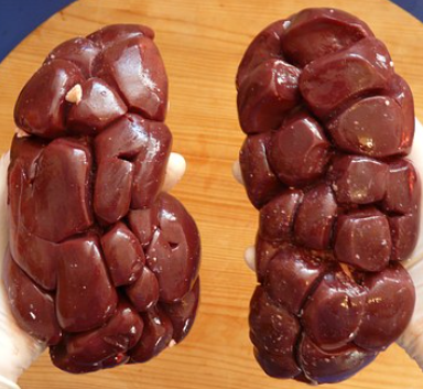 Offal/Organ Meat - why feed it?