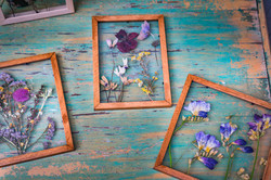 Framing flowers and leaves