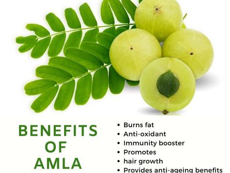 Benefits of Amla / Indian Gooseberry