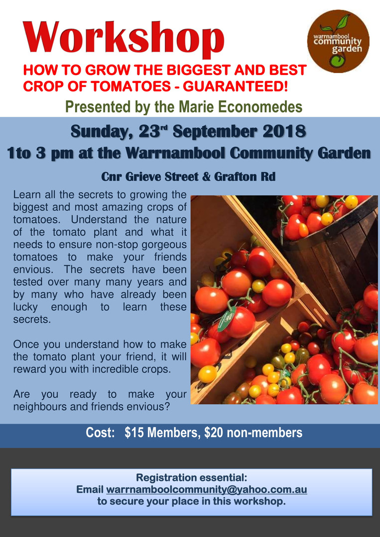Tomato Workshop-1.jpg