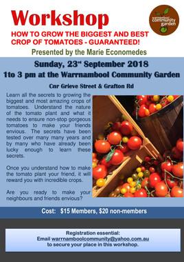 Tomato Workshop-1.jpg