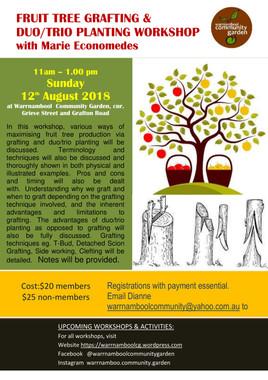 Grafting Workshop Aug 18-1.jpg