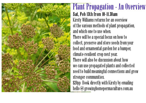 Prop overview for website.jpg