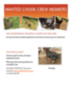 Chicken Help Needed Flyer.docx-1.jpg