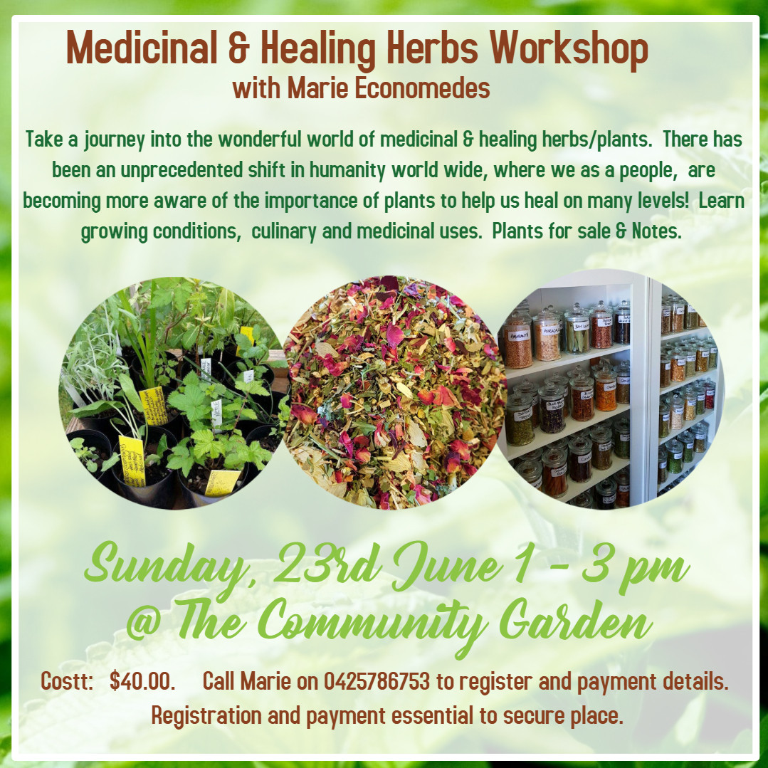 Herb Workshop.jpg