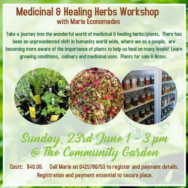 Herb Workshop.jpg