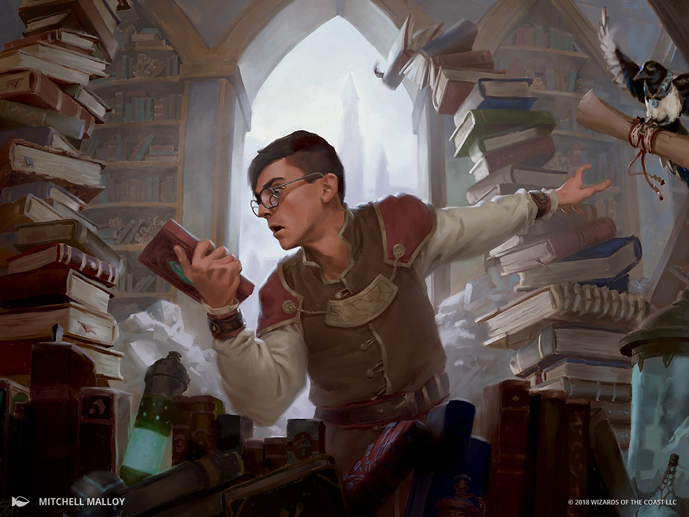 dungeons and dragons wizard studying books