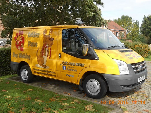 Golden Paws van