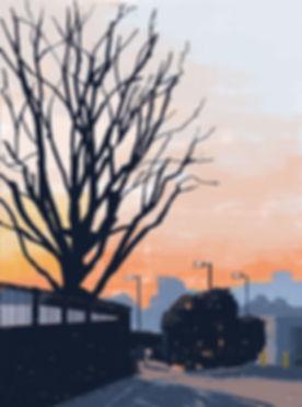 木と夕暮れ.jpg