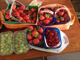 fruitpicking_edited.jpg