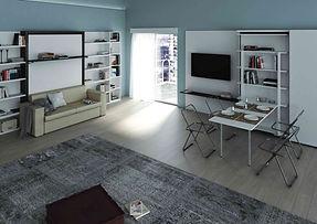 Dile Sofa Murphy Bed & Table.jpg