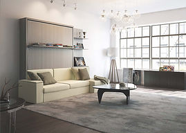 Dile Evoluation Queen Murphy Sofa Bed Cl