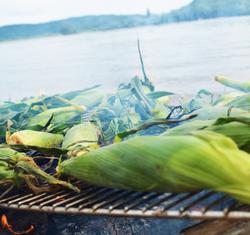 corn roast beach