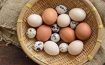 trứng cac loại.jpg