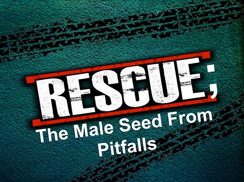 RESCUE: The Male Seed From Pitfalls!