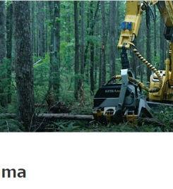 rintsuma_edited.jpg
