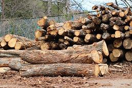 薪原木 2ⅿ以下玉切材 ナラ