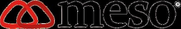 Logo Meso Telecom