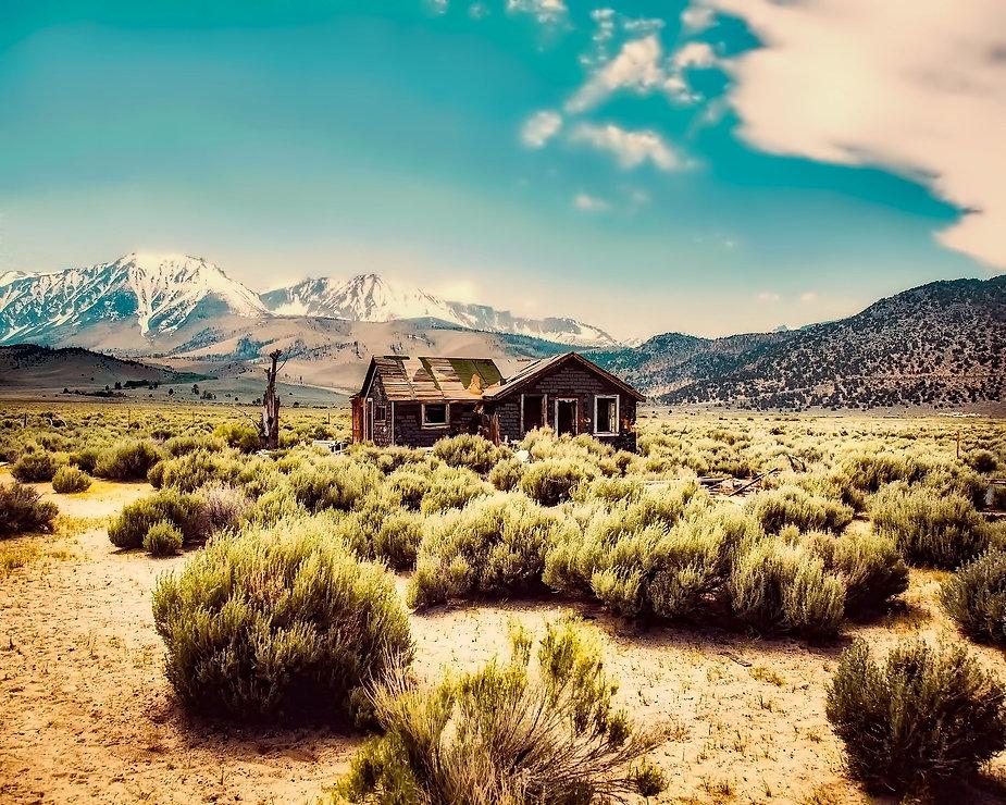 desert cabin.jpg