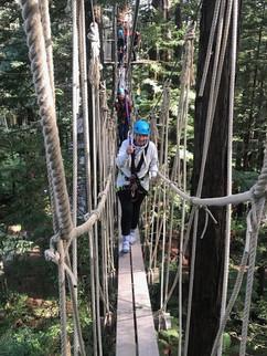 Redwoods Treewalk Tour