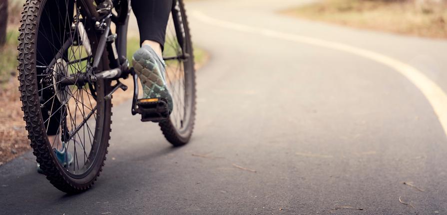 bike-hire-cambridge-nz