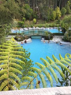 Wairakei Thermal Pools