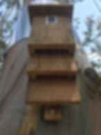 bat-box-installed-by-treelands-nz