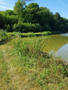 Pêcher en Meuse