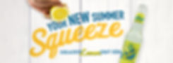 Limoncito Header Website.jpg
