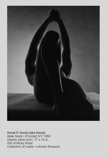 Horst P. Horst (aka Horst) Male Nude I (Frontal) NY, 1952 Gelatin silver print, 17 x 14 in.  Gift of Ricky Horst Collection of Leslie- Lohman Museum