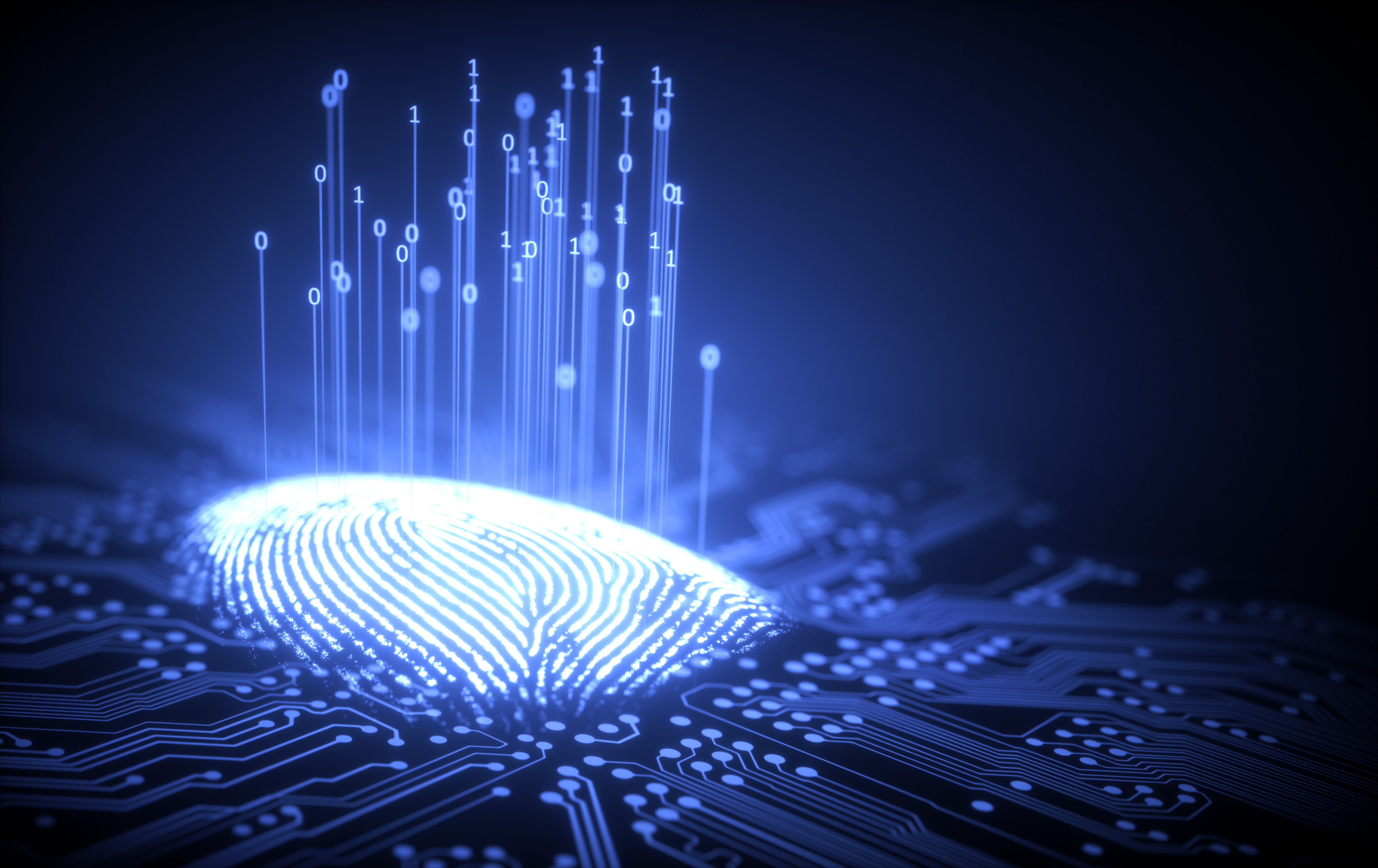 Fingerprint Capture and Submissions