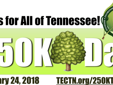 Come out and plant a tree!
