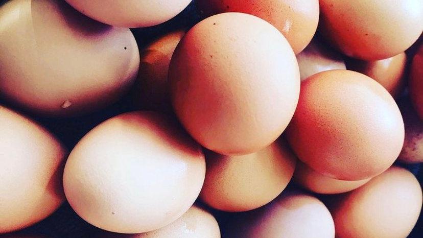 Eggs - dz