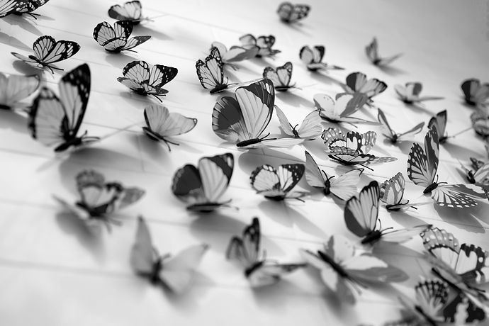 Wall decorations with colorful butterflies_edited.jpg
